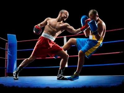Boxing and Martial Arts